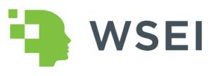 logo_wsei _duze